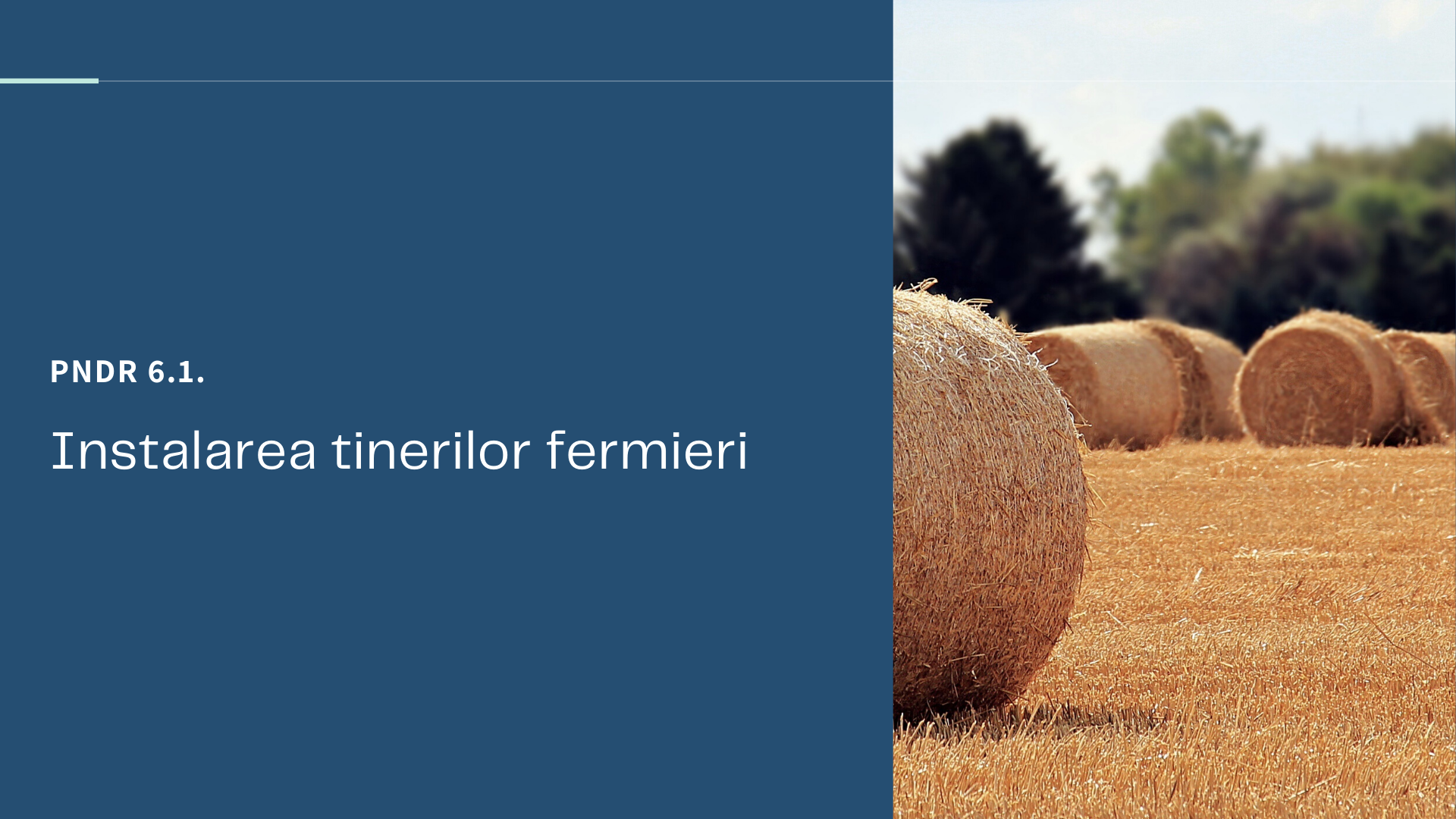 PNDR 6.1 Instalarea tinerilor fermieri