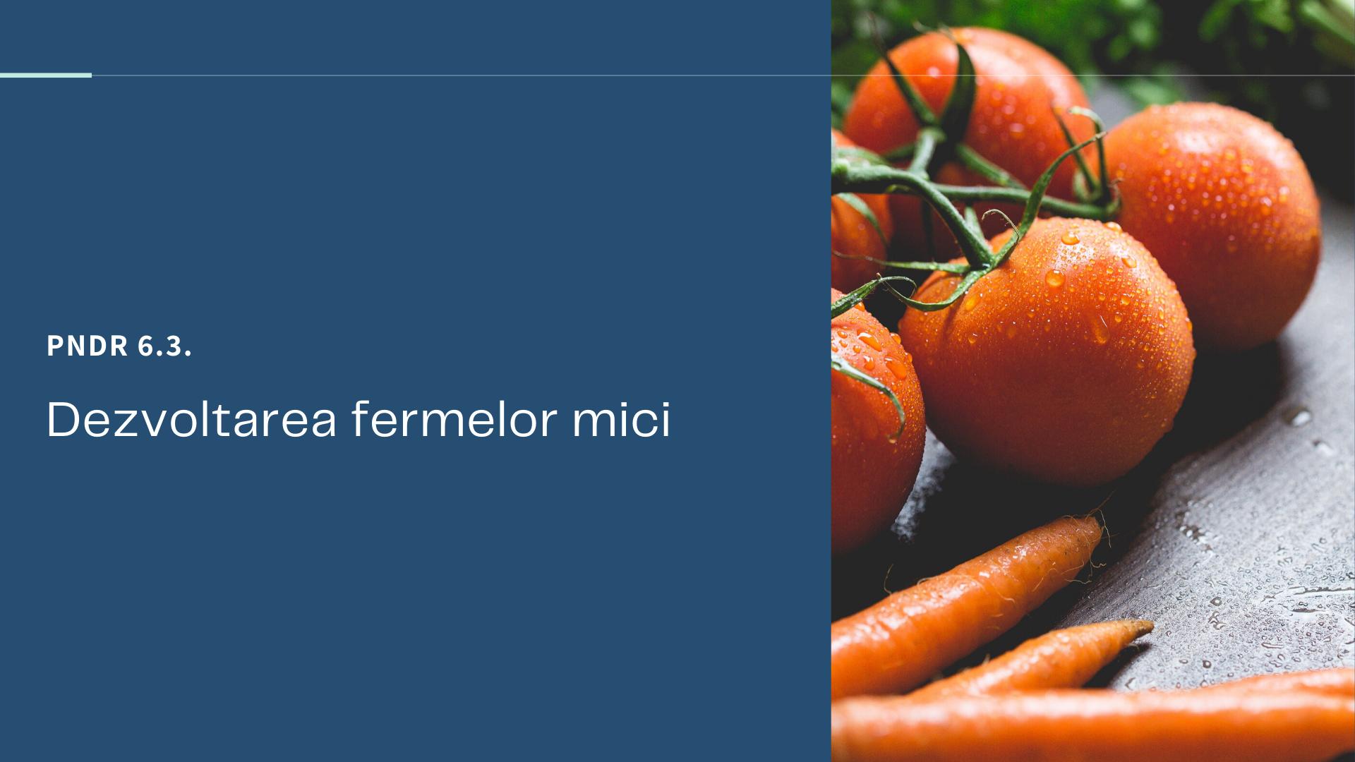 PNDR 6.3 Dezvoltarea fermelor mici