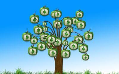Fonduri nerambursabile: Ce sunt cheltuielile neeligibile