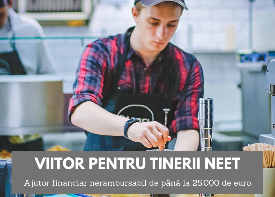 tinerii șomeri pot încasa până la 25.000 de euro pentru înființarea unei afaceri